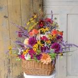 Flower-Story-8016